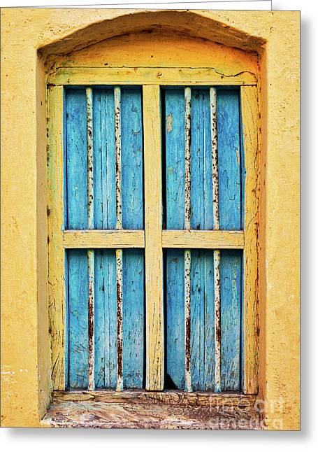 Blue Shutters Greeting Card by Tim Gainey