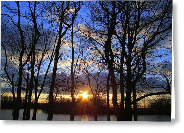 Blue Skies And Golden Sun Greeting Card by J R Seymour