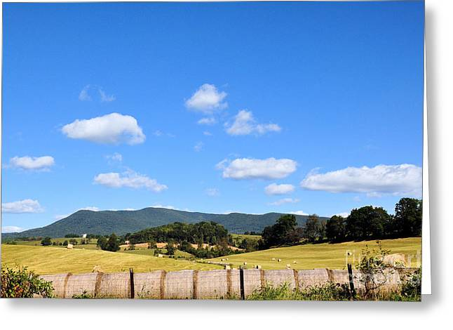 Blue Skies Greeting Card by Todd Hostetter