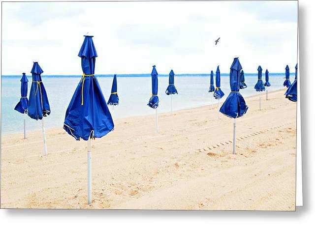 Blue Skirted Ladies Greeting Card by Diana Angstadt