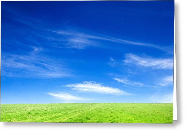 Blue Sky And Green Grass Greeting Card