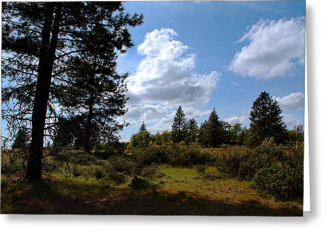 Greeting Card featuring the photograph Blue Sky by Joanne Coyle