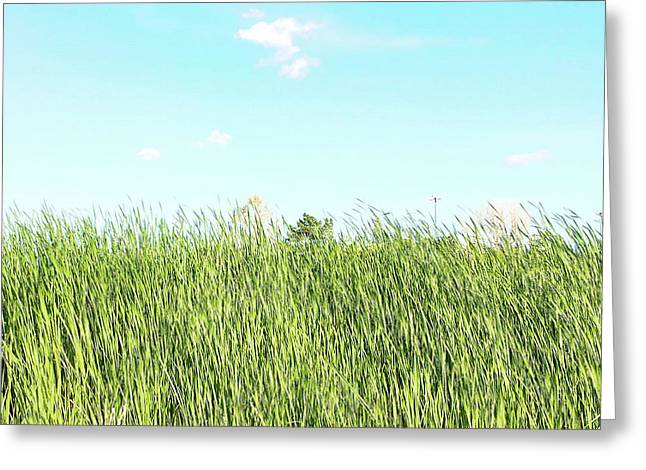 Greeting Card featuring the photograph Blue Sky Over Green Grass by Cindy Garber Iverson