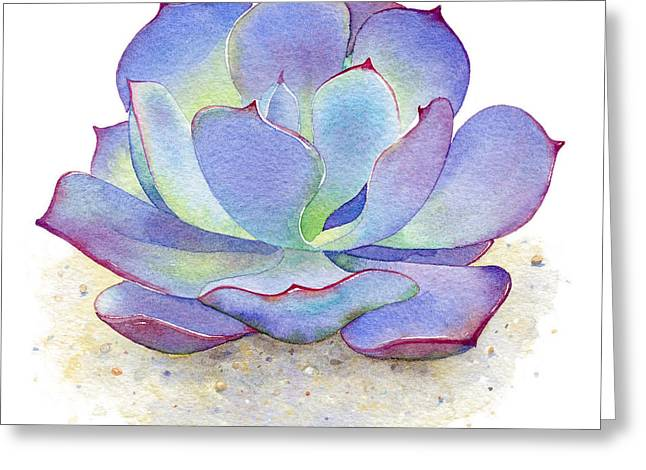 Blue Sky Succulent Greeting Card