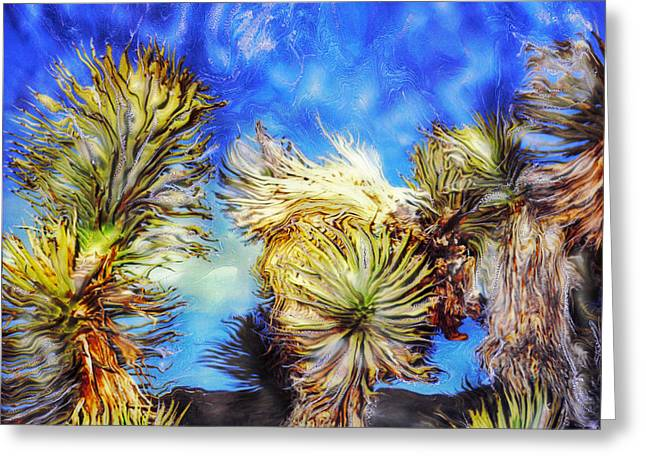 Blue Sky Yucca Greeting Card by Paul Tokarski