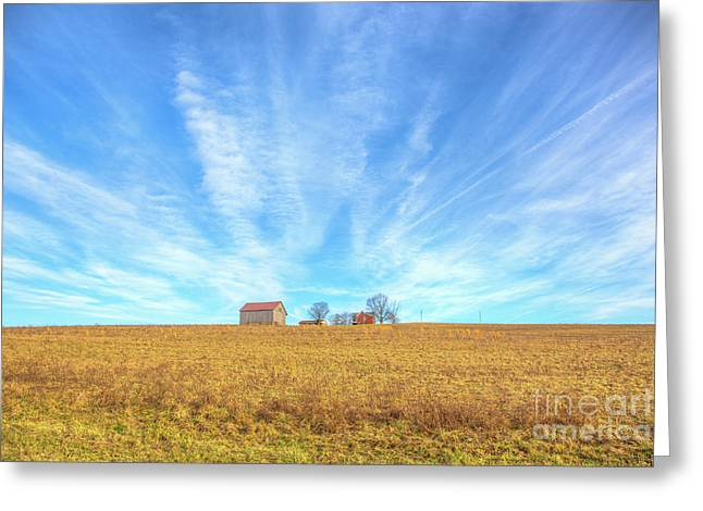 Blue Skys And Yellow Fields Greeting Card