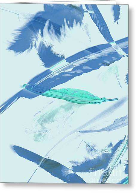 Blue Toned Artistic Feather Abstract Greeting Card