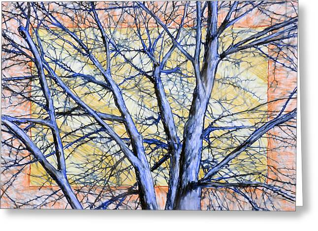 Blue Tree Striped Sky Greeting Card by John Terwilliger