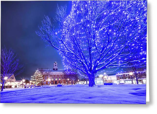 Blue Tree - The Final Year Greeting Card