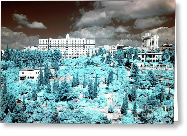 Blue Trees In Jerusalem Greeting Card by John Rizzuto