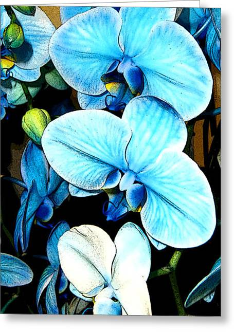 Ohio ist Digital Greeting Cards - Blue Trinity Greeting Card by Mindy Newman