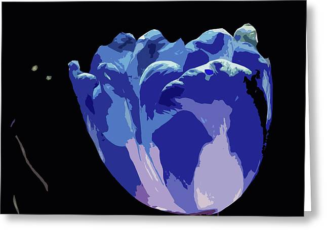 Blue Tulip Greeting Card by James Hill