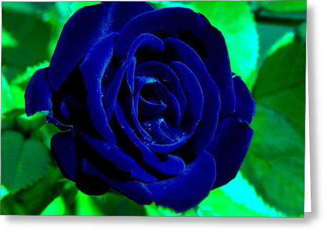 Blue Velvet Rose Greeting Card