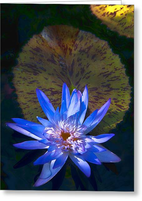 Greeting Card featuring the photograph Blue Water by Lou  Novick