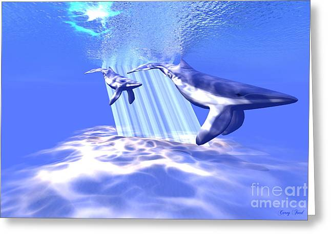 Blue Whales Greeting Card by Corey Ford