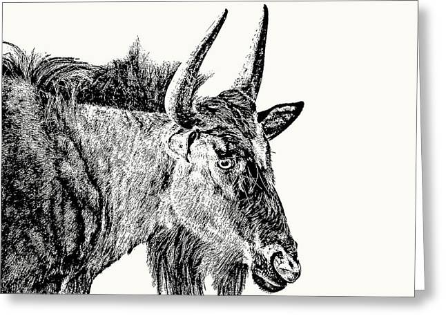 Blue Wildebeest Close-up Greeting Card
