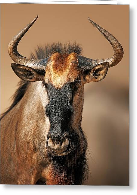 Blue Wildebeest Portrait Greeting Card by Johan Swanepoel