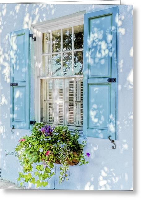 Blue Window Box Greeting Card by Drew Castelhano