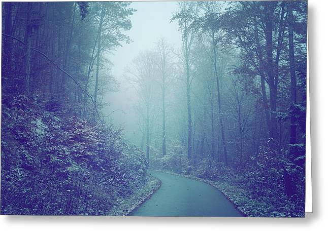 Blue Woods. Misty Way Greeting Card by Jenny Rainbow