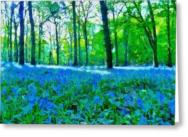 Bluebells In Woodland Greeting Card