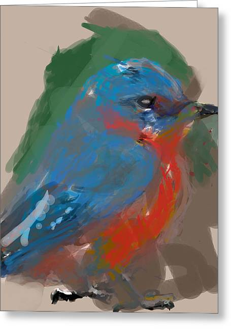 Bluebird Greeting Card by James Thomas