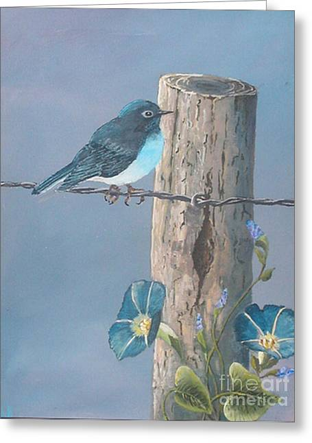 Bluebird Greeting Card by John Wise