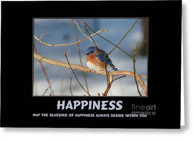 Bluebird Of Happiness Greeting Card by Smilin Eyes  Treasures