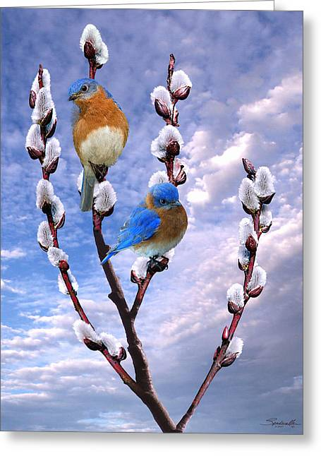 Bluebirds Singing A Song Greeting Card by IM Spadecaller