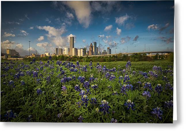 Bluebonnet City Greeting Card