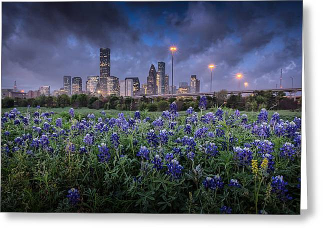 Bluebonnet Houston Greeting Card