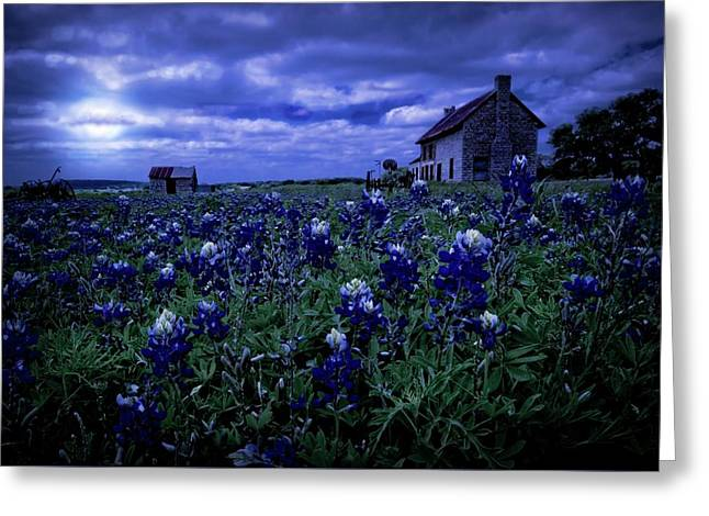 Greeting Card featuring the photograph Bluebonnets In The Blue Hour by Linda Unger