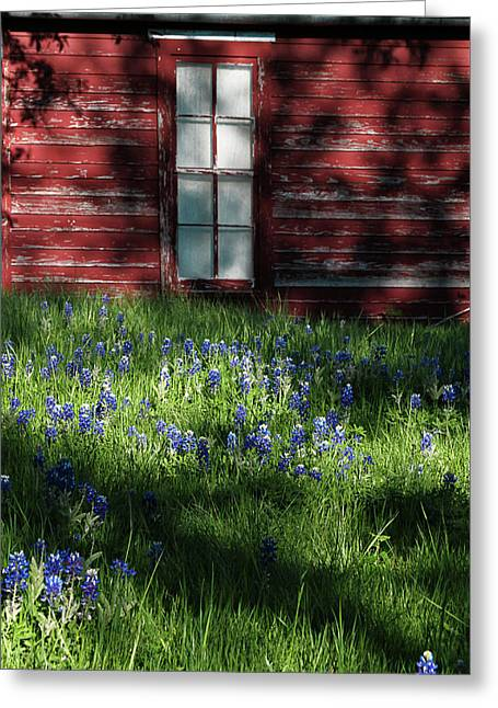 Greeting Card featuring the photograph Bluebonnets In The Shade by David and Carol Kelly