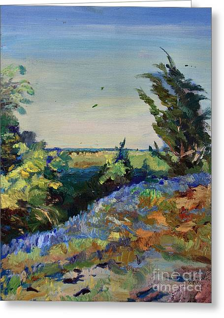 Bluebonnets On A Hill Greeting Card by Maris Salmins