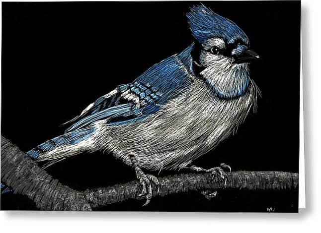 Bluejay Greeting Card