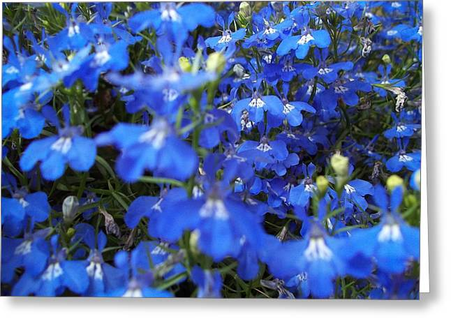 Bluer Than Blue Greeting Card