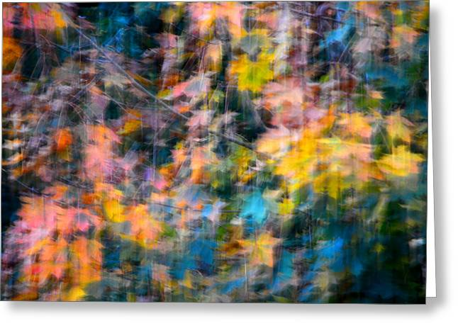 Blurred Leaf Abstract 2 Greeting Card