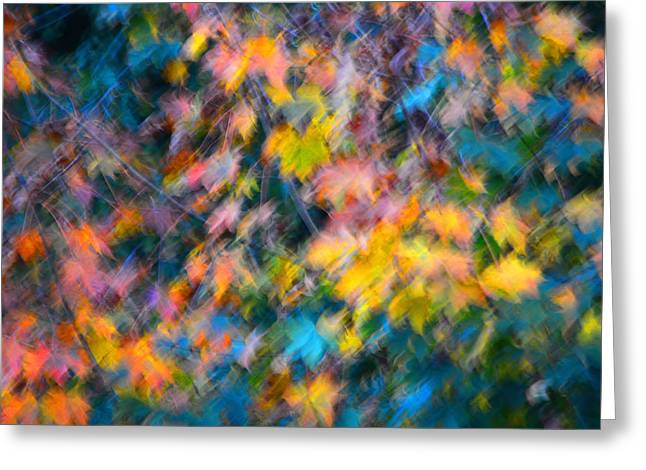 Blurred Leaf Abstract 3 Greeting Card