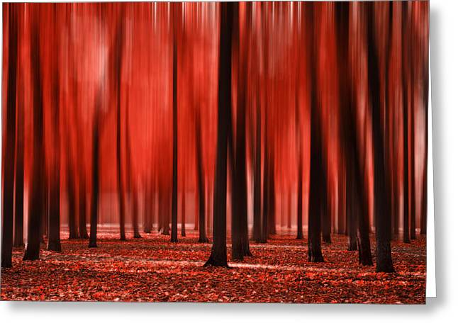 Blurry Autumn Red Greeting Card by Sandra Rugina