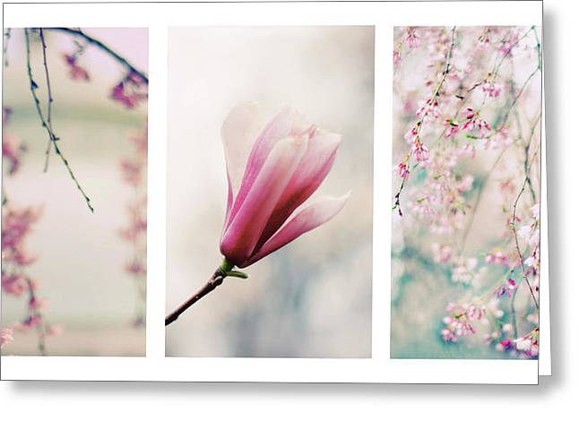 Greeting Card featuring the photograph Blush Blossom Triptych by Jessica Jenney