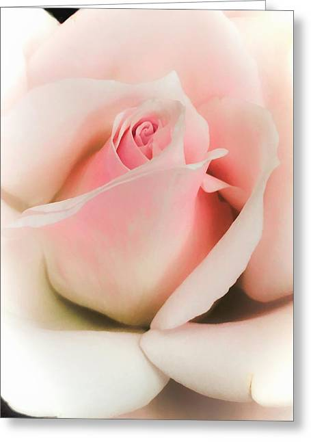 Blushing Petals Greeting Card