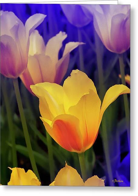 Blushing Tulips Greeting Card