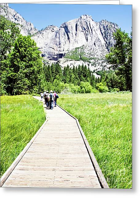Boardwalk On Yosemite Meadow Greeting Card