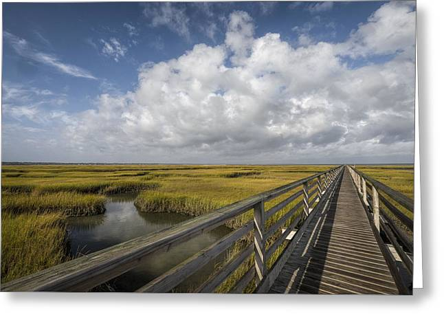 Boardwalk Over The Marsh In Autumn Greeting Card by Betty Wiley