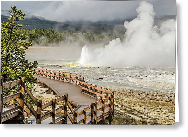 Greeting Card featuring the photograph Boardwalk Overlooking Spasm Geyser by Sue Smith