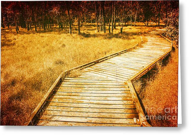 Boardwalk Through Vintage Wetlands Greeting Card by Jorgo Photography - Wall Art Gallery