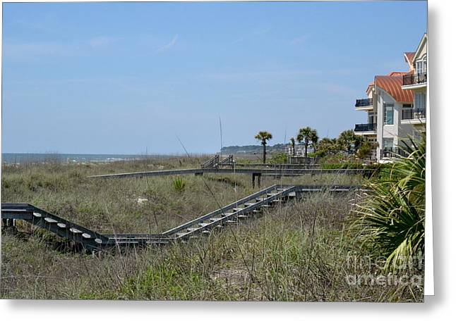 Greeting Card featuring the photograph Boardwalks And Sand Dunes by Carol  Bradley