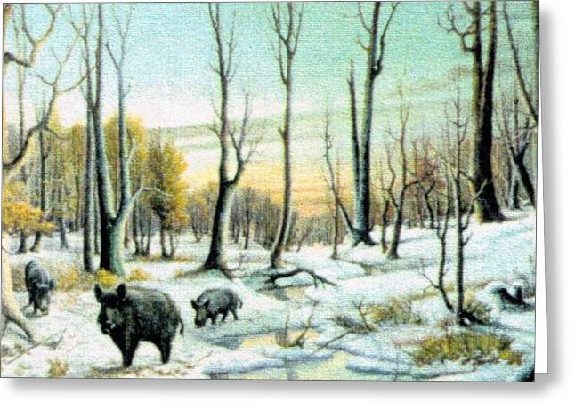 Boars In Winter - Sold Greeting Card by Florentina Popa