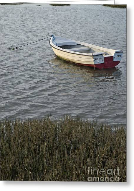 Boat In Ria Formosa - Faro Greeting Card by Angelo DeVal
