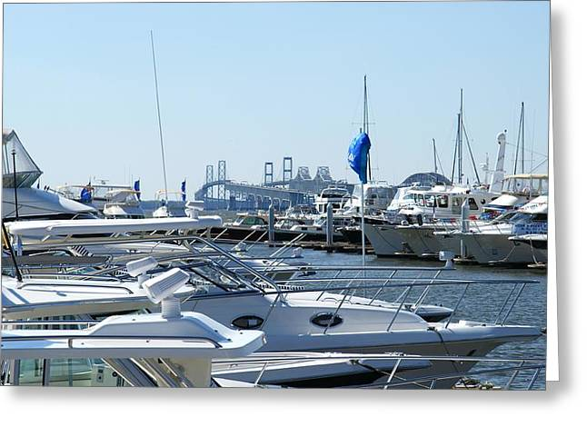 Boat Show On The Bay Greeting Card