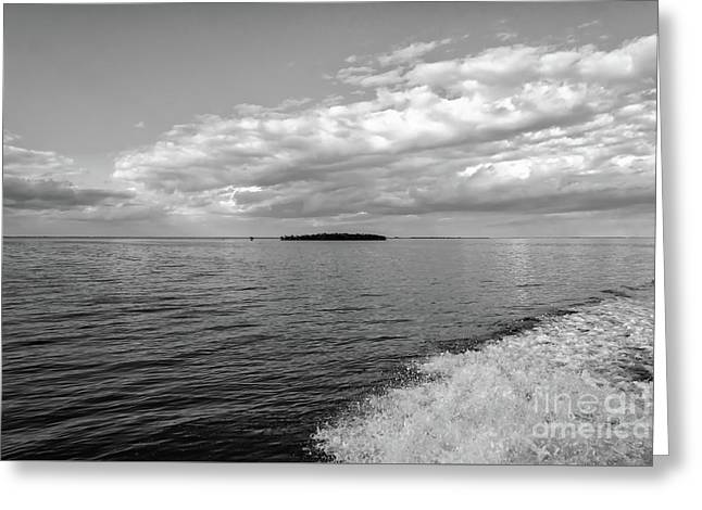 Boat Wake On Florida Bay Greeting Card